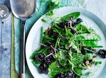 Must-Try Vegan Gourmet Salad Recipes You Will Love
