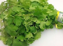 Coriander (Cilantro) Is More Than Just An Aromatic Herb