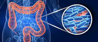 Microbiome-How To Take Care Of A Healthy Intestinal Flora