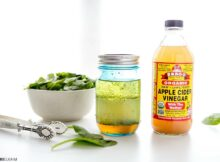 recipes with apple cider vinegar